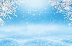 Paisaje de la Navidad del invierno Imágenes de archivo libres de regalías