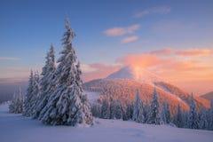 Paisaje de la Navidad en las montañas del invierno en la puesta del sol fotografía de archivo libre de regalías