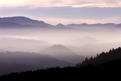 Paisaje de la niebla fotografía de archivo