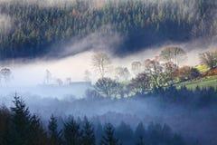 Paisaje de la niebla de la mañana Fotos de archivo libres de regalías