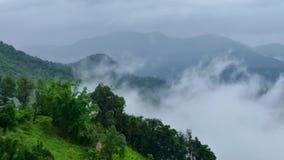 Paisaje de la niebla de la mañana en la estación de lluvias almacen de video
