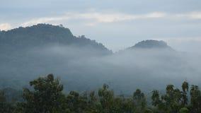 Paisaje de la niebla que flota en pico de montaña almacen de video