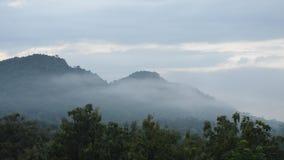 Paisaje de la niebla que flota en pico de montaña metrajes