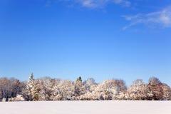 Paisaje de la nieve imagen de archivo libre de regalías