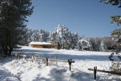 Paisaje de la nieve Fotos de archivo libres de regalías