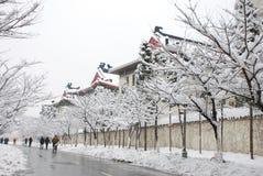 Paisaje de la nieve Foto de archivo