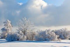 Paisaje de la nieve del invierno, altos pantanos, Bélgica Fotografía de archivo