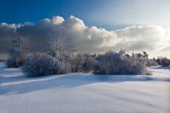Paisaje de la nieve del invierno, dramático, nubes, altos pantanos, Bélgica Foto de archivo