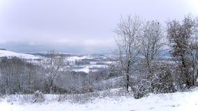 Paisaje de la nieve en invierno Imágenes de archivo libres de regalías