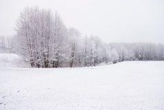 Paisaje de la nieve en la marcha Fotos de archivo libres de regalías