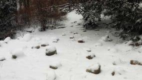Paisaje de la nieve en parque Fotografía de archivo libre de regalías