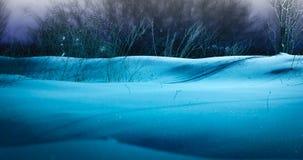 Paisaje de la noche con nieve Foto de archivo libre de regalías