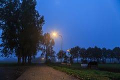 Paisaje de la noche de un camino solo a través del campo Fotografía de archivo libre de regalías