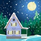 Paisaje de la noche del invierno stock de ilustración