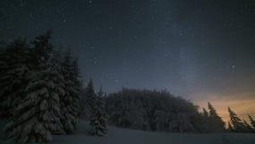 Paisaje de la noche del invierno de la Navidad con el cielo de las estrellas que se mueve sobre árboles nevosos El lapso de tiemp almacen de metraje de vídeo