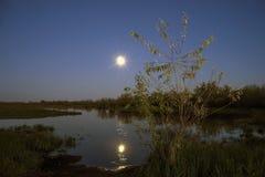 Paisaje de la noche en el lago de la luna en cielo Fotografía de archivo