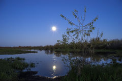 Paisaje de la noche en el lago de la luna en cielo Foto de archivo