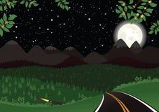 Paisaje de la noche estrellada Ilustración del Vector