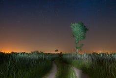 Paisaje de la noche estrellada con el camino y un árbol solitario Imagenes de archivo