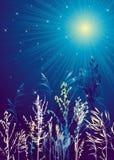 Paisaje de la noche, vector Fotos de archivo libres de regalías