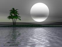 Paisaje de la palmera ilustración del vector