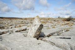 Paisaje de la piedra caliza Imágenes de archivo libres de regalías