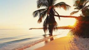 Paisaje de la playa tropical de la isla del para?so y de la salida del sol hermosa metrajes
