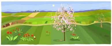 Paisaje de la primavera stock de ilustración