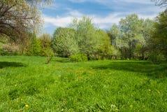 Paisaje de la primavera Fotos de archivo