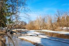 Paisaje de la primavera con el río y el bosque Fotografía de archivo
