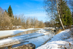 Paisaje de la primavera con el río y el bosque Fotos de archivo