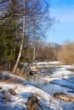 Paisaje de la primavera con el río y la madera Fotos de archivo