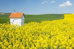 Paisaje de la primavera con los campos coloreados y poca capilla Fotos de archivo