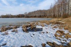 Paisaje de la primavera con vistas al lago y a árboles Imagen de archivo libre de regalías