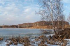 Paisaje de la primavera con vistas al lago y a árboles Fotos de archivo libres de regalías
