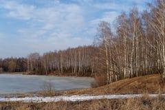 Paisaje de la primavera con vistas al lago y a árboles Imagenes de archivo