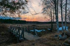 Paisaje de la primavera de la puesta del sol con el campo, los abedules y el puente Fotos de archivo