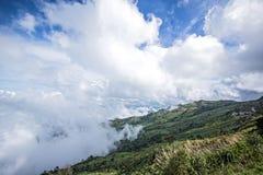 Paisaje de la primavera del valle de la montaña de la niebla y de la nube Cuesta de montaña boscosa en nube de mentira baja Fotos de archivo libres de regalías