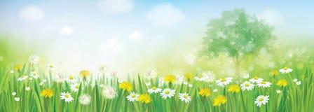 Paisaje de la primavera del vector stock de ilustración