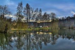 Paisaje de la primavera, el nivel del agua delante de árboles Imagenes de archivo
