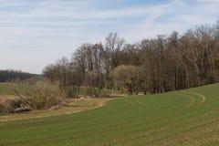 Paisaje de la primavera en Baviera Imagen de archivo libre de regalías