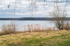 Paisaje de la primavera en el lago Biserovo, región de Moscú Fotos de archivo