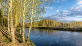 Paisaje de la primavera en el río de Ural con el abedul, Rusia Fotos de archivo