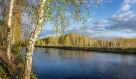 Paisaje de la primavera en el río de Ural con el abedul, Rusia Imagen de archivo libre de regalías