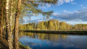 Paisaje de la primavera en el río de Ural con el abedul, Rusia Fotos de archivo libres de regalías