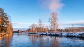 Paisaje de la primavera en el río en la puesta del sol y una multitud de pájaros, Rusia, Ural Fotos de archivo
