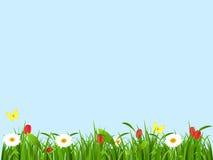 Paisaje de la primavera, fondo para una tarjeta Fotos de archivo libres de regalías