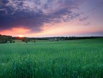 Paisaje de la puesta del sol de la primavera fotos de archivo