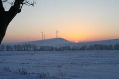 Paisaje de la puesta del sol de los árboles del invierno Fotografía de archivo libre de regalías