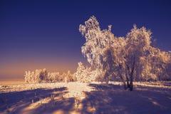 Paisaje de la puesta del sol del cuento de hadas del invierno Imagenes de archivo